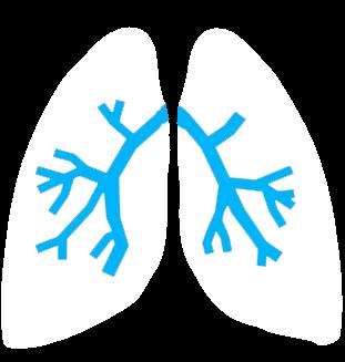 Akciğer Kanseri Tedavisi